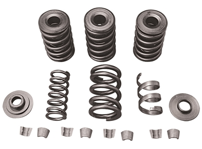 Picture of PERFORMANCE VALVE SPRING KITS FOR EVOLUTION MODELS & TWIN CAM
