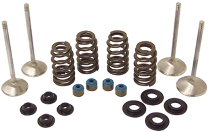 Picture of VALVE TRAIN COMPONENT KIT FOR TWIN CAM