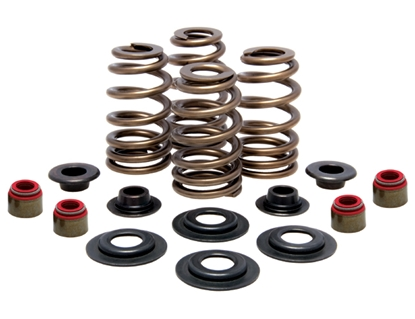 Picture of VALVE SPRING KIT