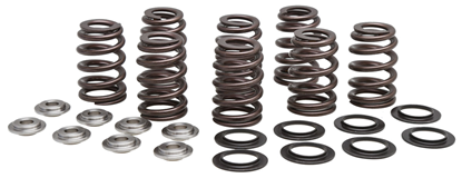Picture of VALVE SPRING KITS