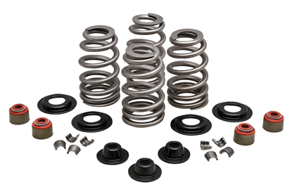 Picture of VALVE SPRING KIT FOR TWIN CAM